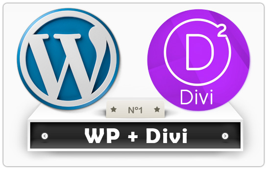 how to add divi to wordpress